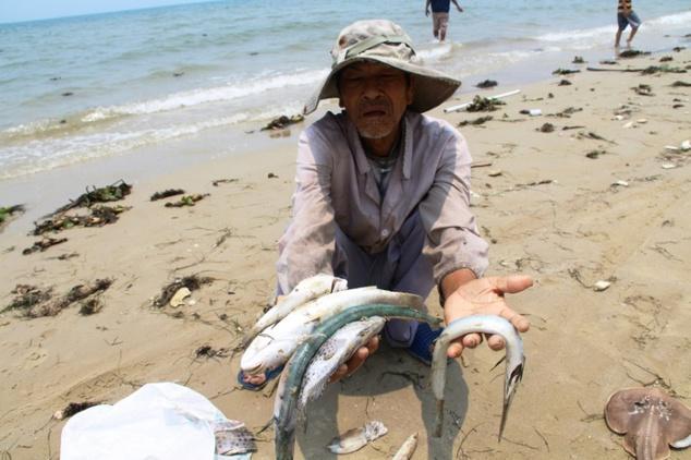fish death 2